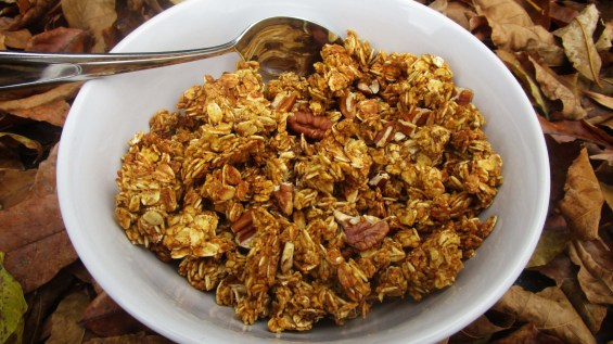 pumpkin_pecan_granola_cover_photo (1)